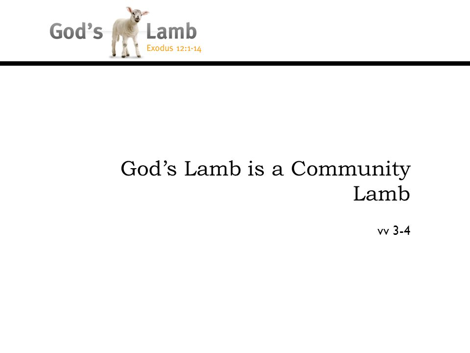 God's Lamb is a Community Lamb vv 3-4