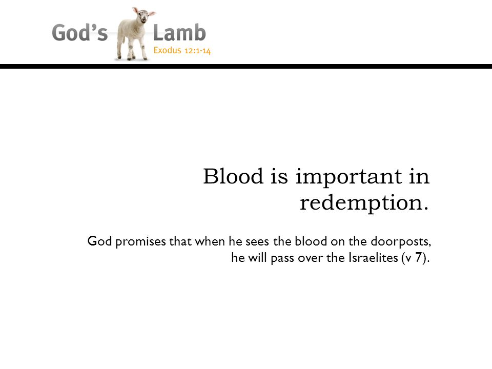 God promises that when he sees the blood on the doorposts, he will pass over the Israelites (v 7).