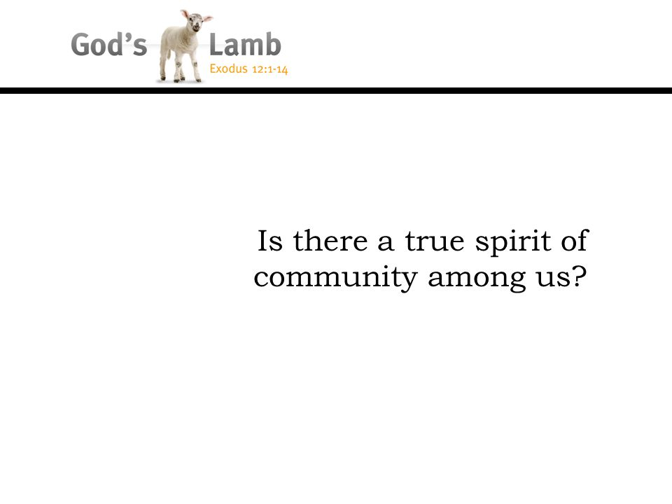 Is there a true spirit of community among us?