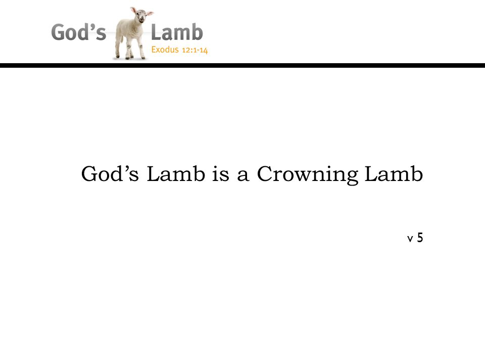 God's Lamb is a Crowning Lamb v 5