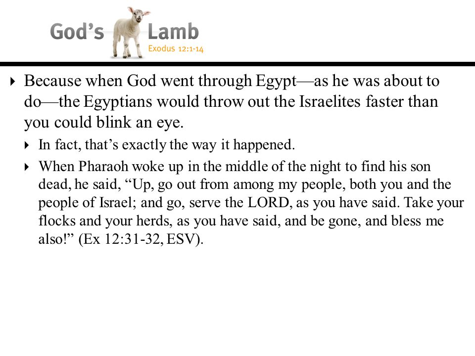  Because when God went through Egypt—as he was about to do—the Egyptians would throw out the Israelites faster than you could blink an eye.
