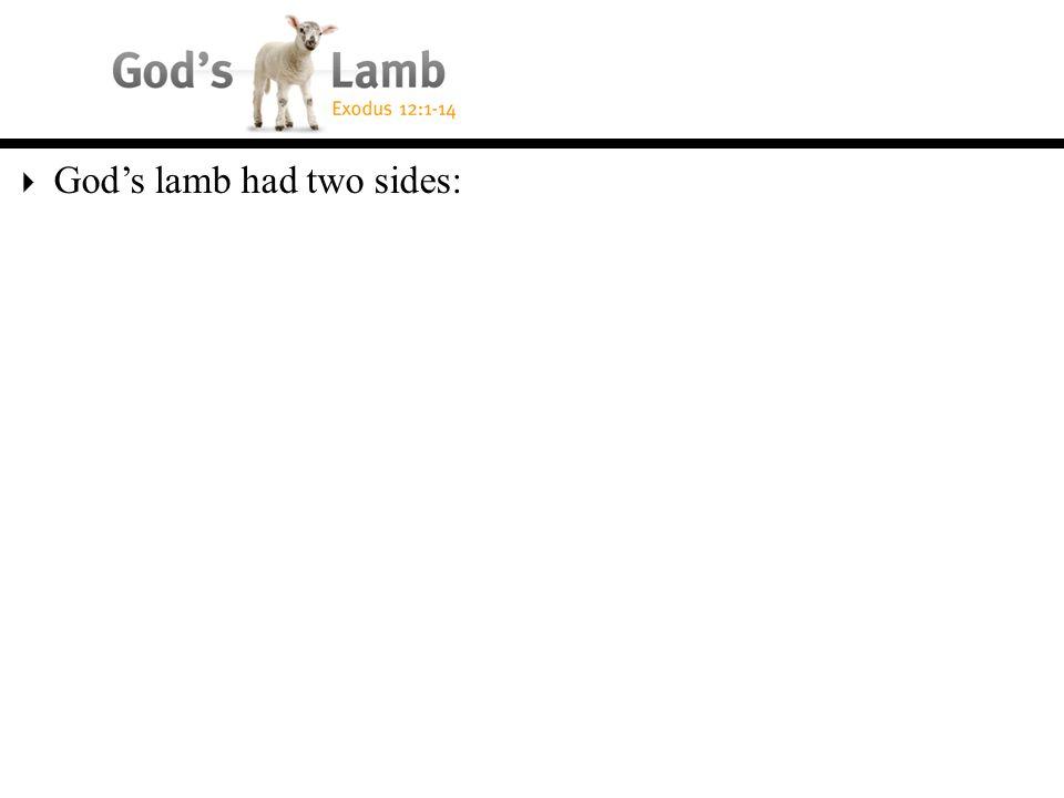  God's lamb had two sides: