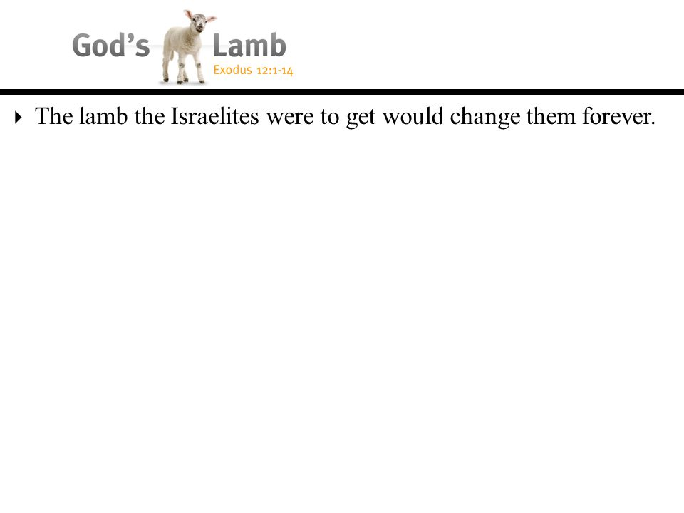  The lamb the Israelites were to get would change them forever.
