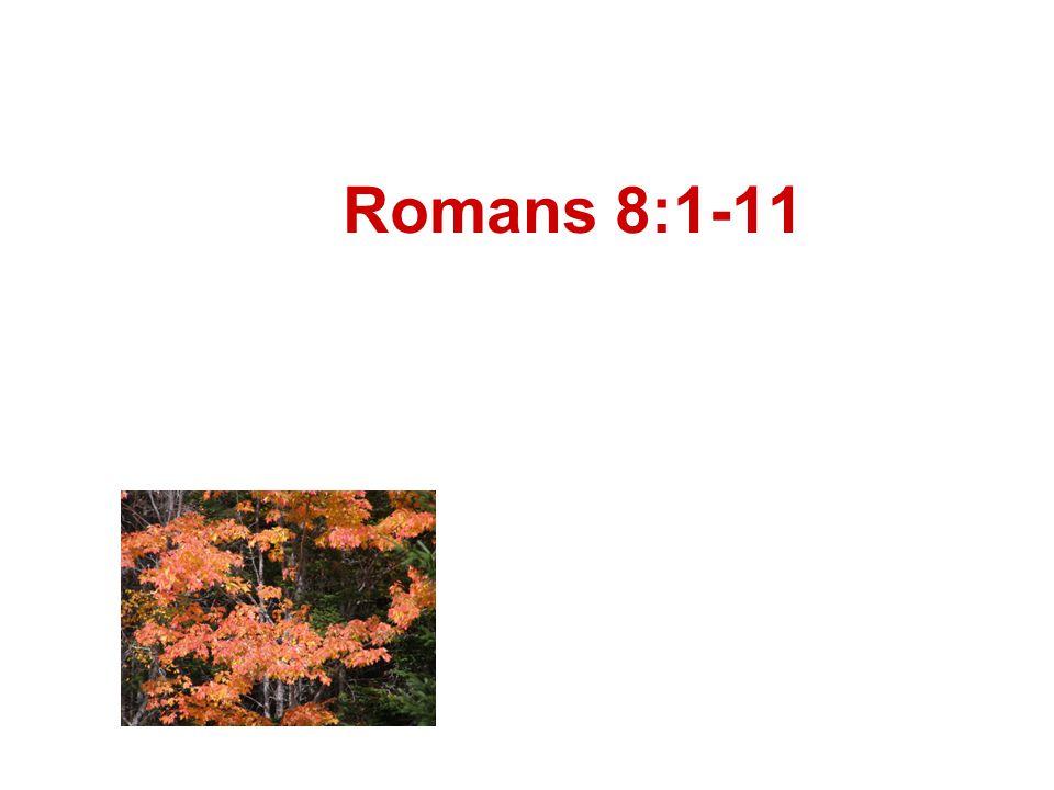 Romans 8:1-11