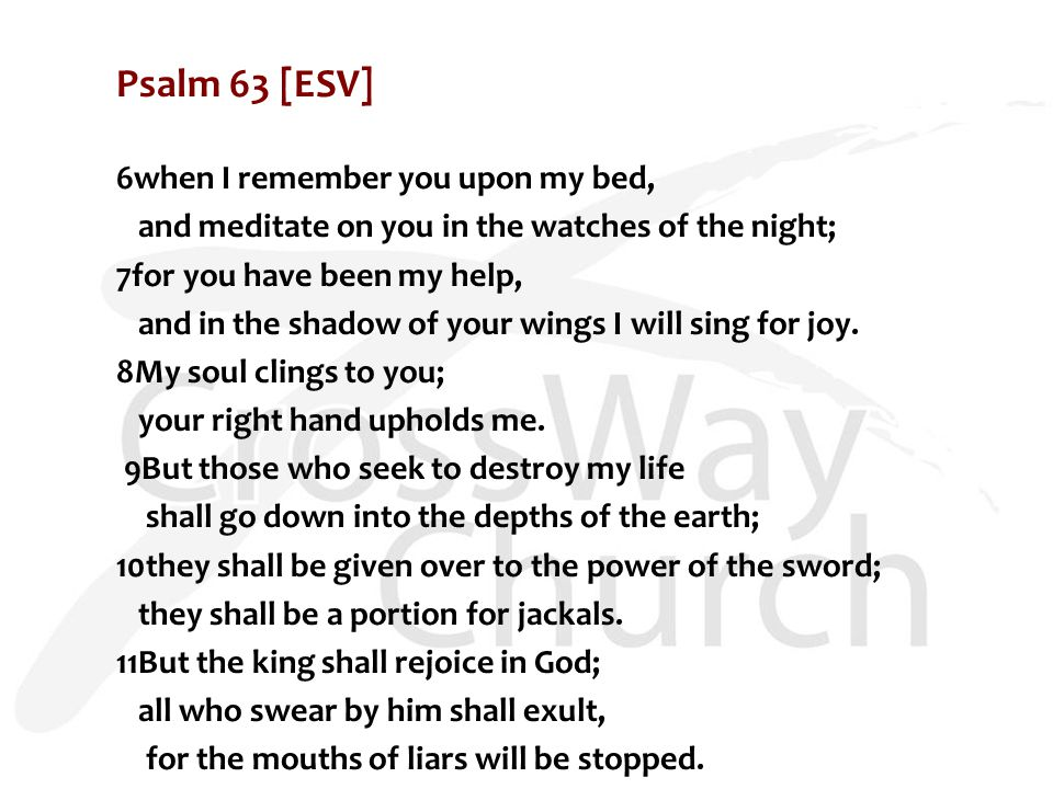 Psalm 63 [ESV] 6when I remember you upon my bed, and meditate on you in the watches of the night; 7for you have been my help, and in the shadow of your wings I will sing for joy.