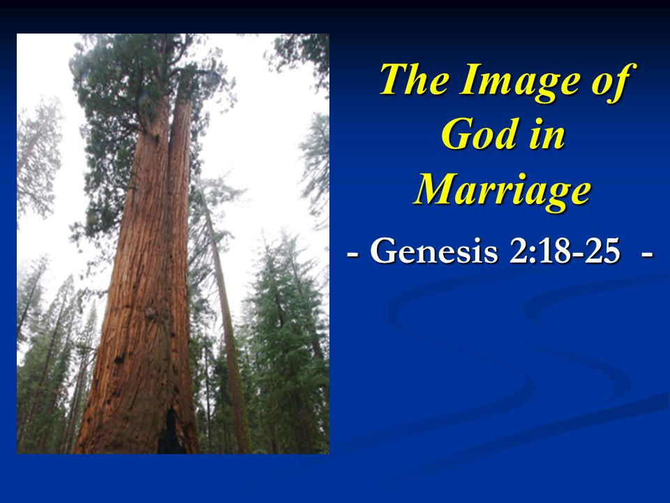 The Image of God in Marriage - Genesis 2: