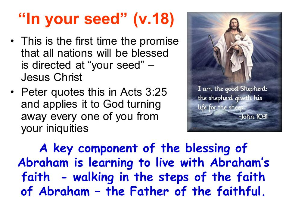 """""""In your seed"""" (v.18) This is the first time the promise that all nations will be blessed is directed at """"your seed"""" – Jesus Christ Peter quotes this"""