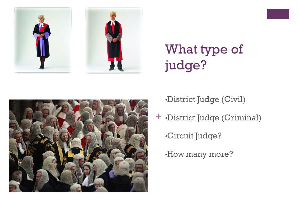 + What type of judge. District Judge (Civil) District Judge (Criminal) Circuit Judge.