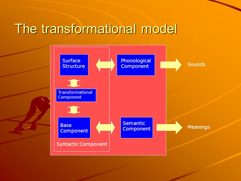 The transformational model Base Component Phonological Component Semantic Component Transformational Component Sounds Meanings Surface Structure Syntactic Component