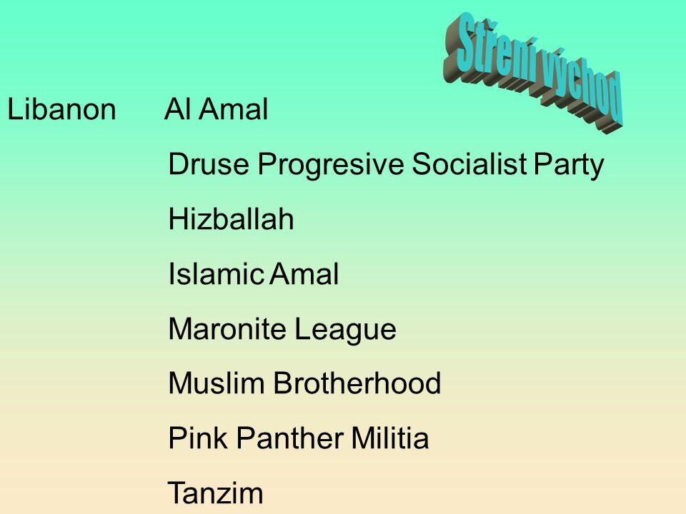 Libanon Al Amal Druse Progresive Socialist Party Hizballah Islamic Amal Maronite League Muslim Brotherhood Pink Panther Militia Tanzim