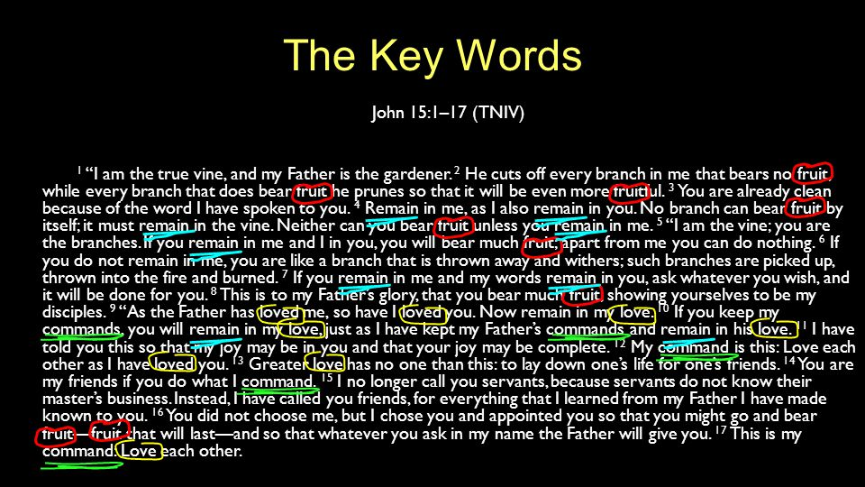 """The Key Words John 15:1–17 (TNIV) 1 """"I am the true vine, and my Father is the gardener. 2 He cuts off every branch in me that bears no fruit, while ev"""