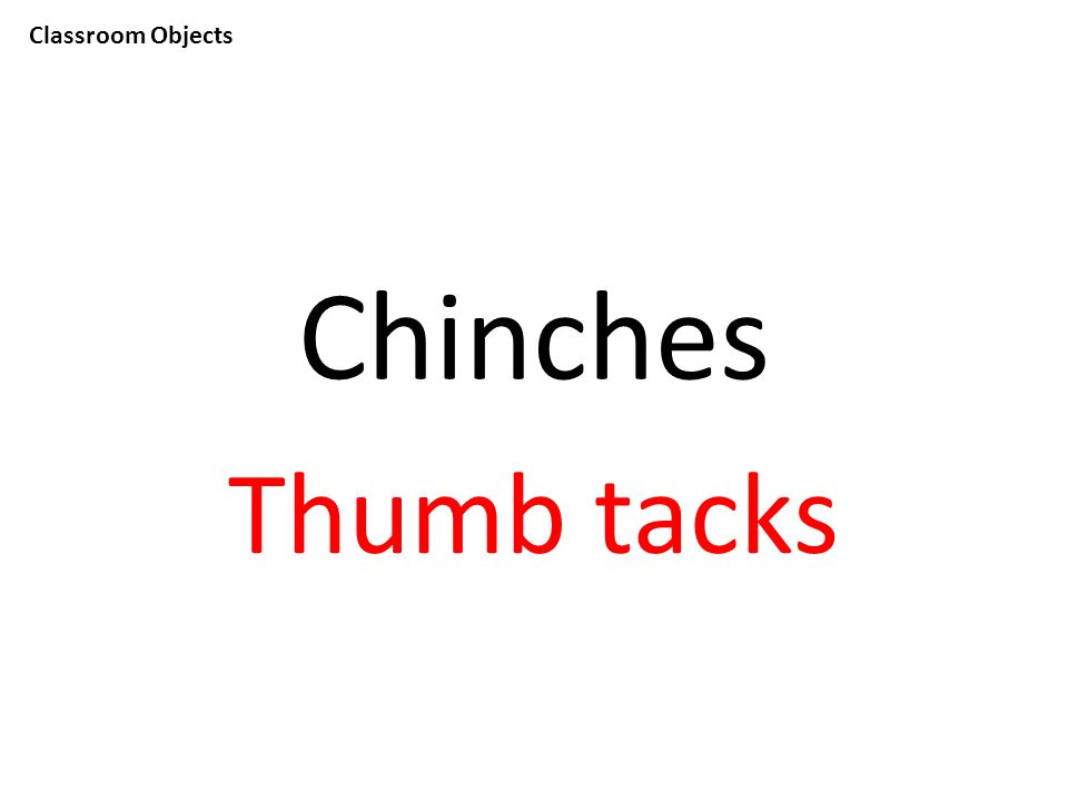 Classroom Objects Chinches Thumb tacks