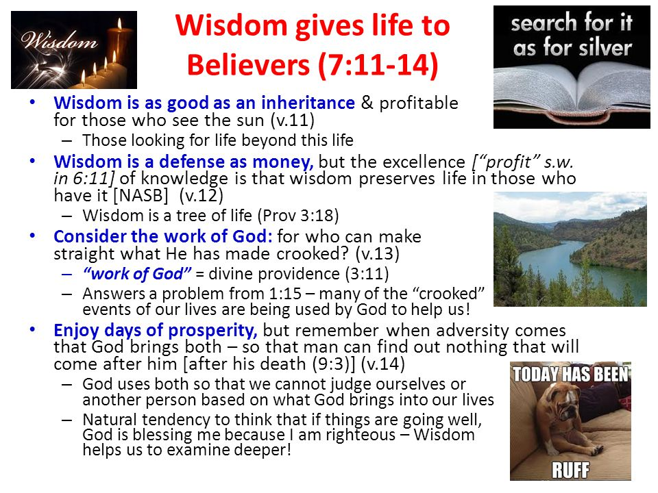 Wisdom gives life to Believers (7:11-14) Wisdom is as good as an inheritance & profitable for those who see the sun (v.11) – Those looking for life beyond this life Wisdom is a defense as money, but the excellence [ profit s.w.