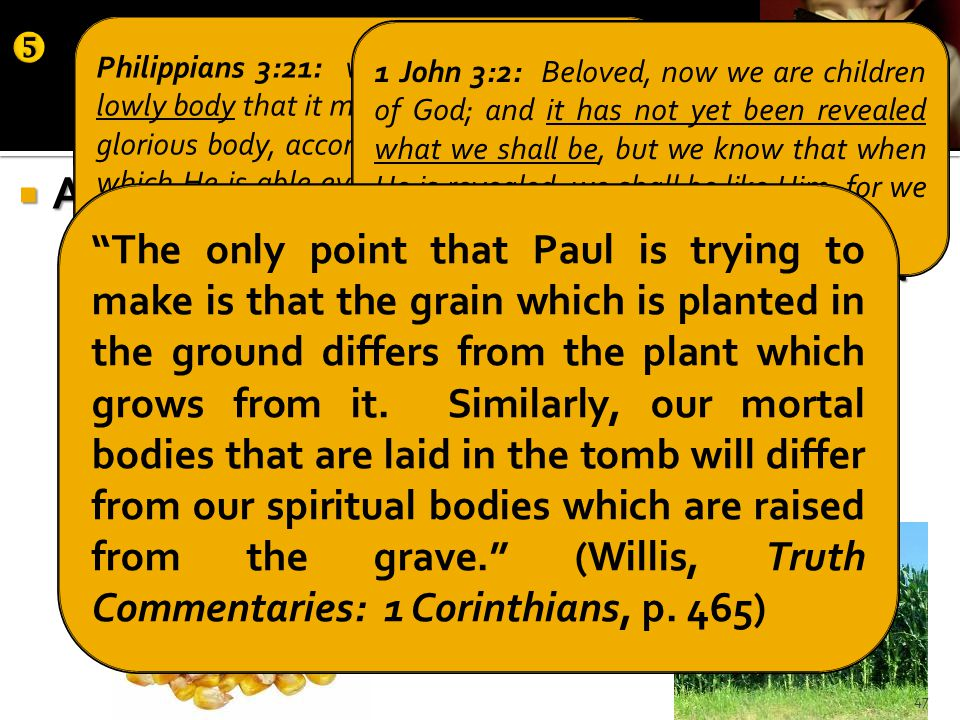  Answers: analogy #1—seed/plant  what you sow, you do not sow that body that shall be (v.