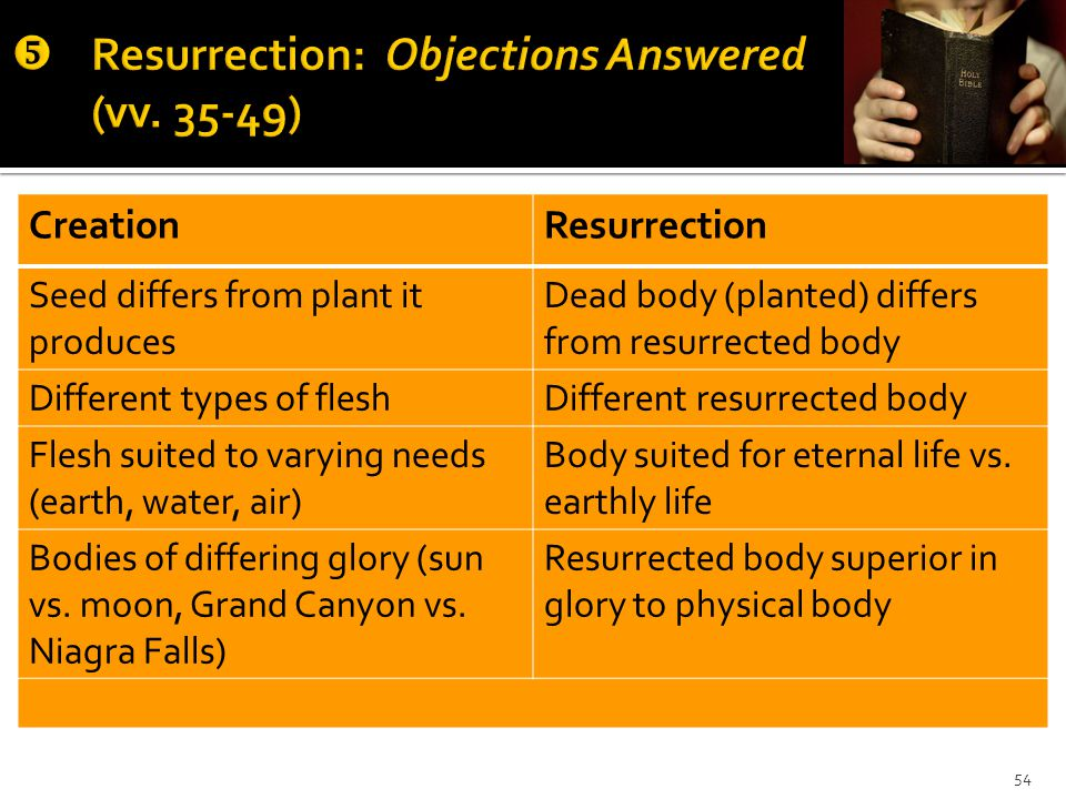 CreationResurrection Seed differs from plant it produces Dead body (planted) differs from resurrected body Different types of fleshDifferent resurrected body Flesh suited to varying needs (earth, water, air) Body suited for eternal life vs.