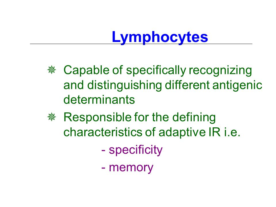 Lymphocytes  Capable of specifically recognizing and distinguishing different antigenic determinants  Responsible for the defining characteristics of adaptive IR i.e.