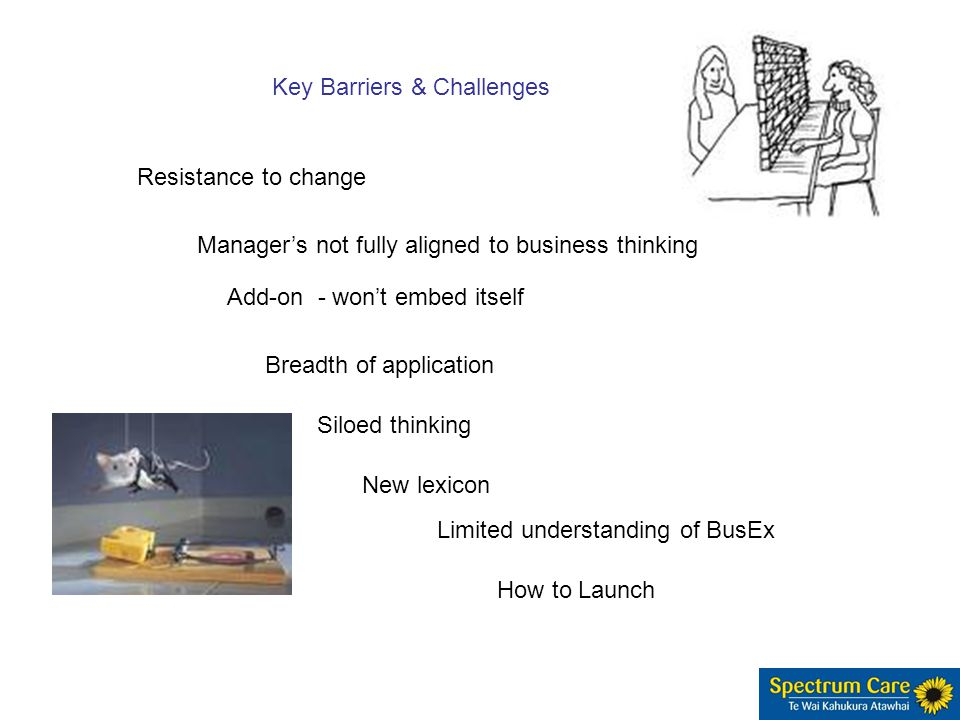 Manager's not fully aligned to business thinking Add-on - won't embed itself Key Barriers & Challenges Resistance to change Breadth of application Siloed thinking New lexicon Limited understanding of BusEx How to Launch