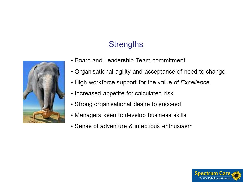 Board and Leadership Team commitment Organisational agility and acceptance of need to change High workforce support for the value of Excellence Increased appetite for calculated risk Strong organisational desire to succeed Managers keen to develop business skills Sense of adventure & infectious enthusiasm Strengths