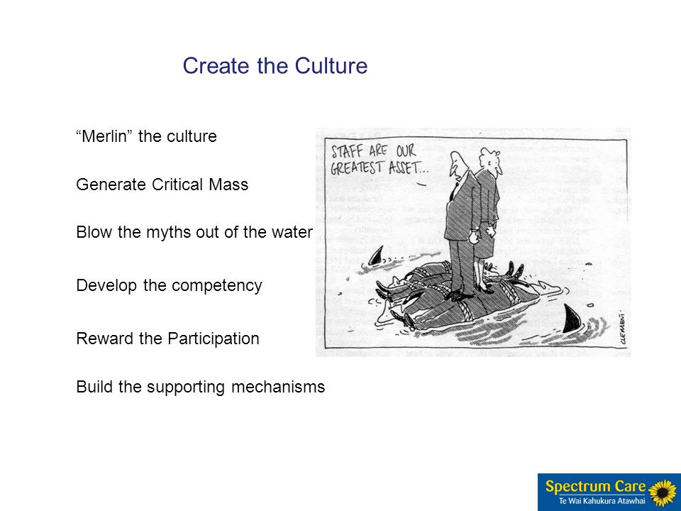 Generate Critical Mass Blow the myths out of the water Develop the competency Reward the Participation Create the Culture Build the supporting mechanisms Merlin the culture