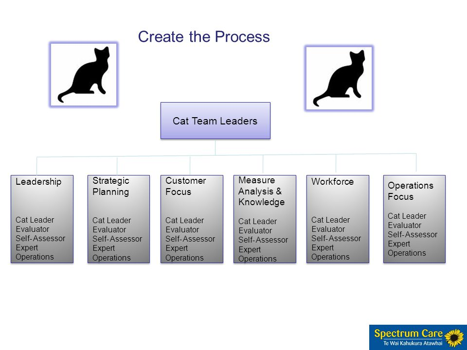 Leadership Cat Leader Evaluator Self- Assessor Expert Operations Leadership Cat Leader Evaluator Self- Assessor Expert Operations Strategic Planning Cat Leader Evaluator Self- Assessor Expert Operations Strategic Planning Cat Leader Evaluator Self- Assessor Expert Operations Customer Focus Cat Leader Evaluator Self- Assessor Expert Operations Customer Focus Cat Leader Evaluator Self- Assessor Expert Operations Measure Analysis & Knowledge Cat Leader Evaluator Self- Assessor Expert Operations Measure Analysis & Knowledge Cat Leader Evaluator Self- Assessor Expert Operations Workforce Cat Leader Evaluator Self- Assessor Expert Operations Workforce Cat Leader Evaluator Self- Assessor Expert Operations Focus Cat Leader Evaluator Self- Assessor Expert Operations Focus Cat Leader Evaluator Self- Assessor Expert Operations Cat Team Leaders Create the Process