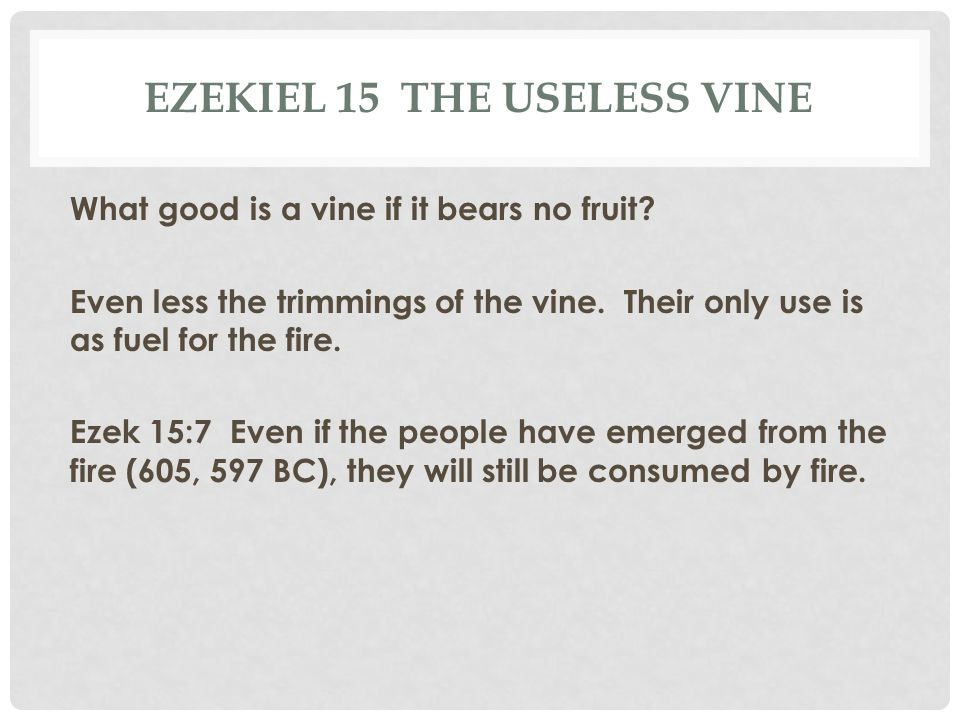 EZEKIEL 15 THE USELESS VINE What good is a vine if it bears no fruit? Even less the trimmings of the vine. Their only use is as fuel for the fire. Eze