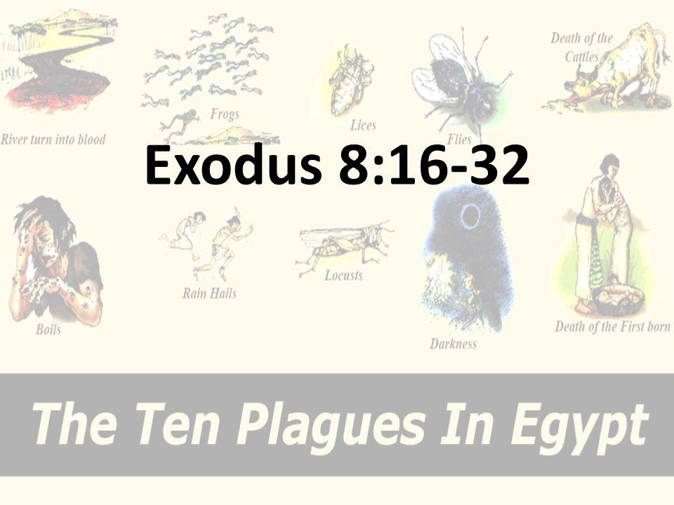 Exodus 8:16-32