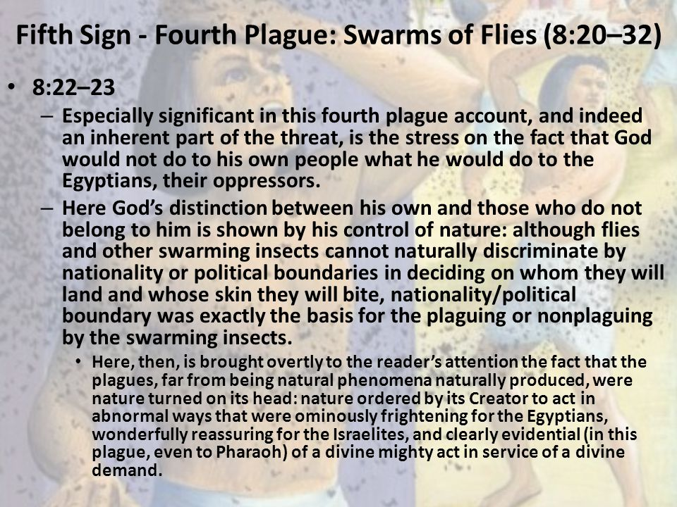 Fifth Sign - Fourth Plague: Swarms of Flies (8:20–32) 8:22–23 – Especially significant in this fourth plague account, and indeed an inherent part of t