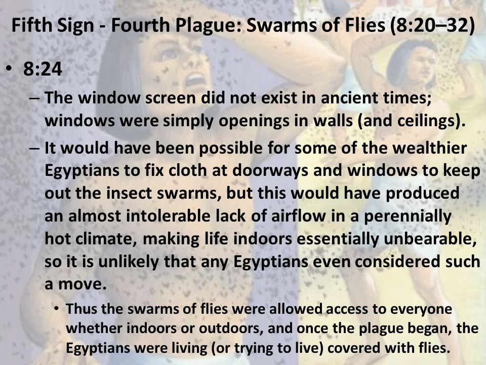 Fifth Sign - Fourth Plague: Swarms of Flies (8:20–32) 8:24 – The window screen did not exist in ancient times; windows were simply openings in walls (