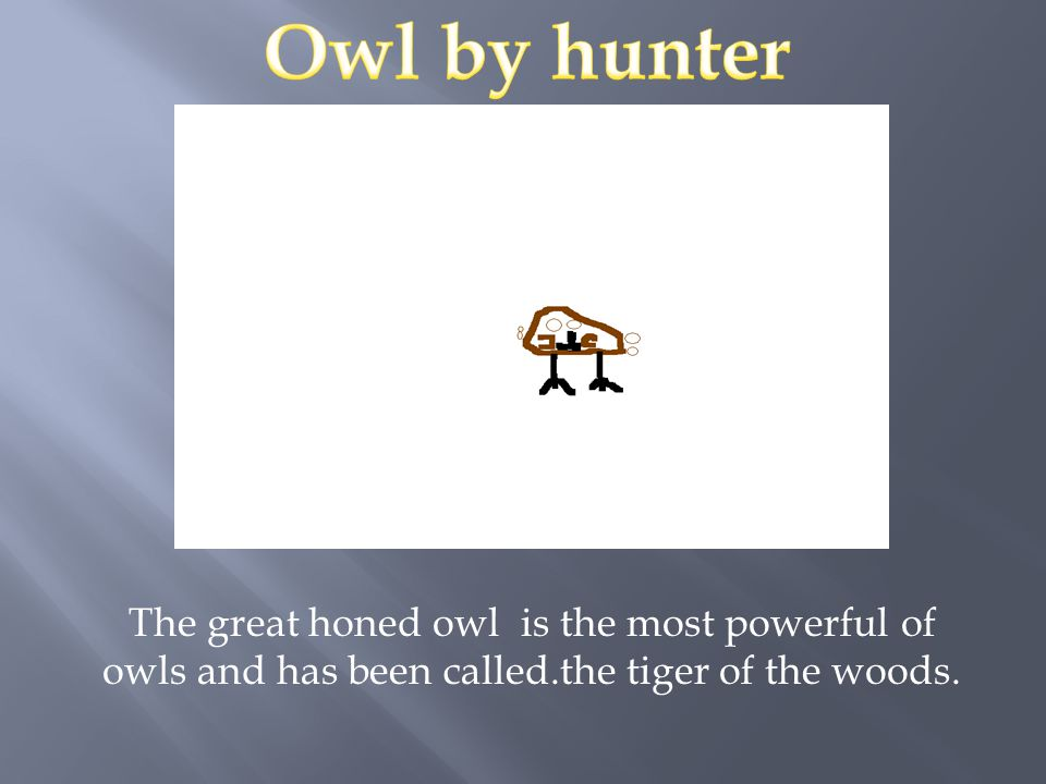The great honed owl is the most powerful of owls and has been called.the tiger of the woods.