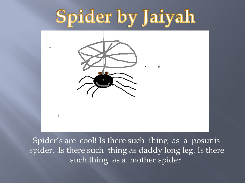 Spider's are cool.Is there such thing as a posunis spider.