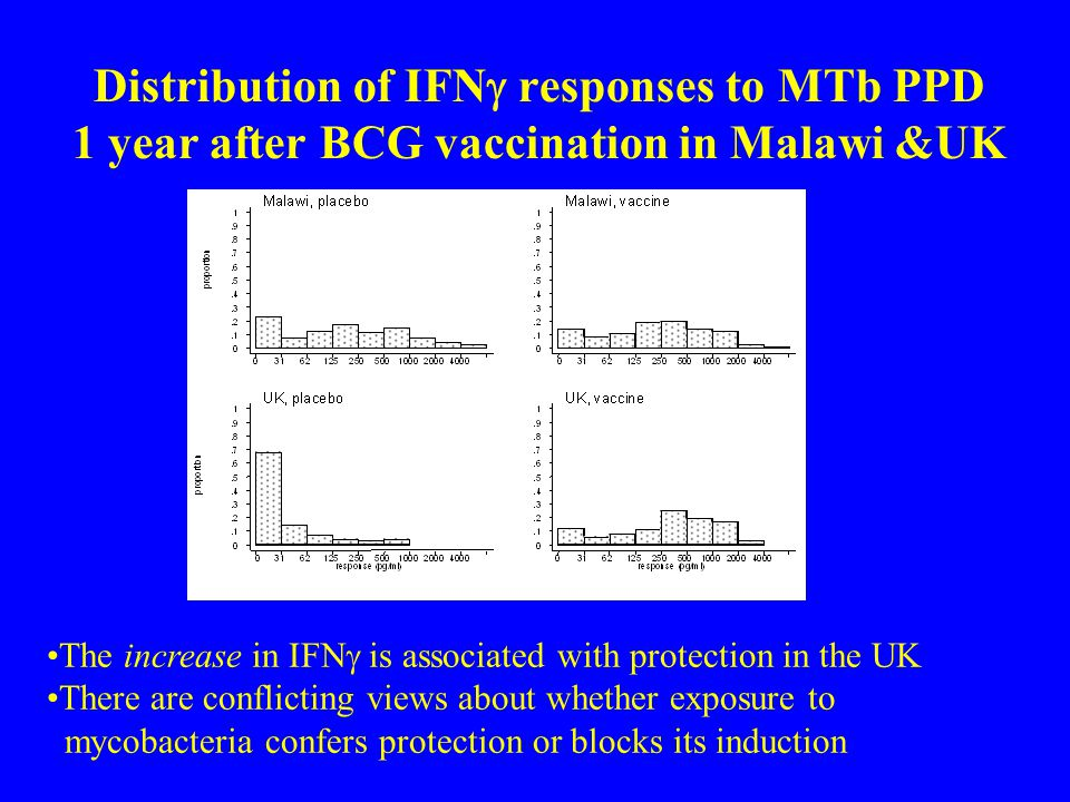 Distribution of IFN  responses to MTb PPD 1 year after BCG vaccination in Malawi &UK The increase in IFN  is associated with protection in the UK Th
