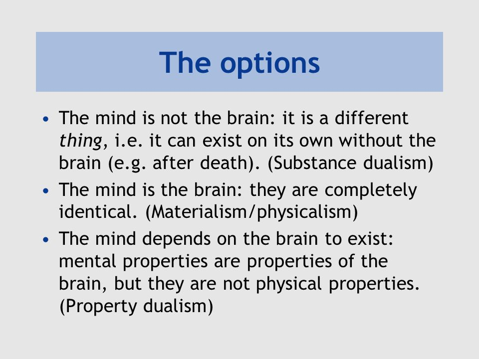 Substances and properties Substances can have different sorts of properties Reductive physicalism: mental properties are physical properties Property dualism: mental properties are not physical properties Hmm…