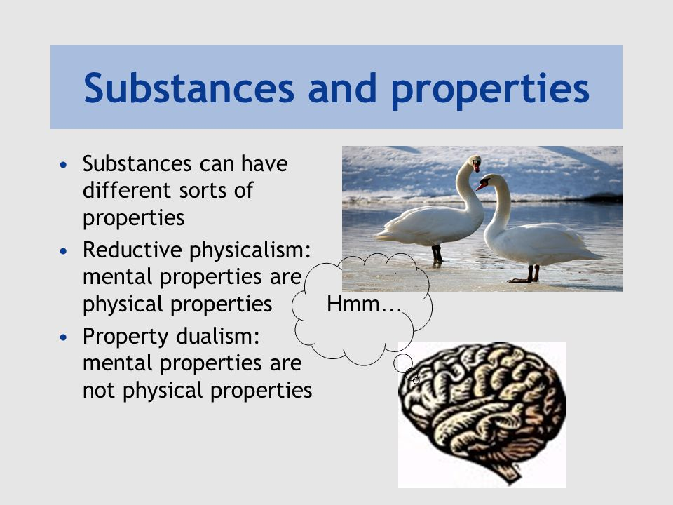 Substances and properties Substances can have different sorts of properties Reductive physicalism: mental properties are physical properties Property
