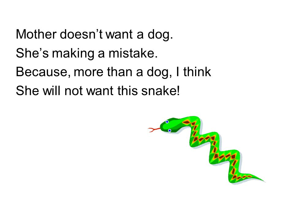 Mother doesn't want a dog. She's making a mistake. Because, more than a dog, I think She will not want this snake!