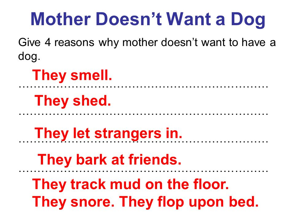 Mother Doesn't Want a Dog Give 4 reasons why mother doesn't want to have a dog. ………………………………………………………… They smell. They shed. They let strangers in. T