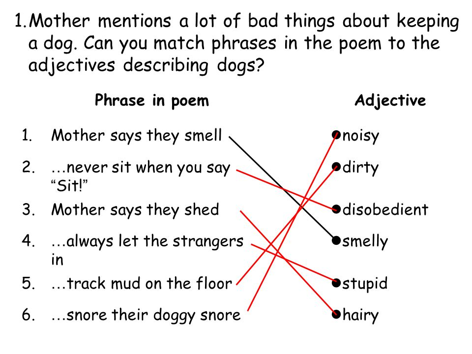 1.Mother mentions a lot of bad things about keeping a dog. Can you match phrases in the poem to the adjectives describing dogs? Phrase in poemAdjectiv