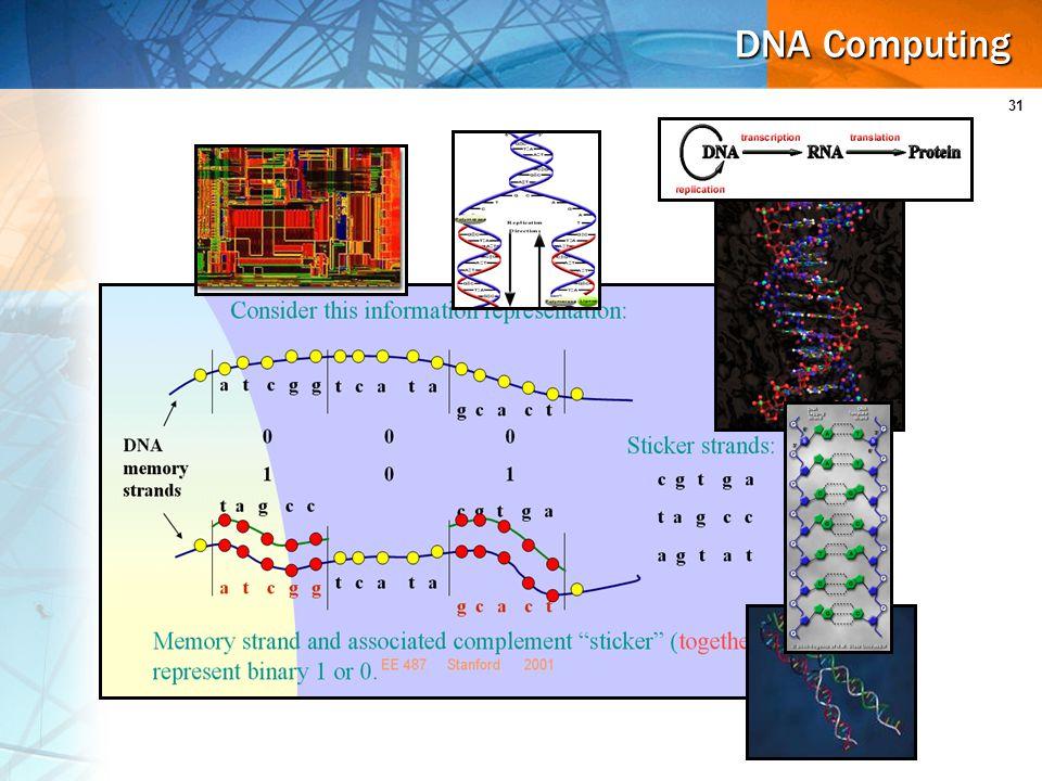 31 DNA Computing