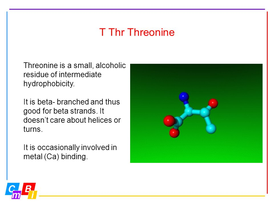 T Thr Threonine Threonine is a small, alcoholic residue of intermediate hydrophobicity. It is beta- branched and thus good for beta strands. It doesn'