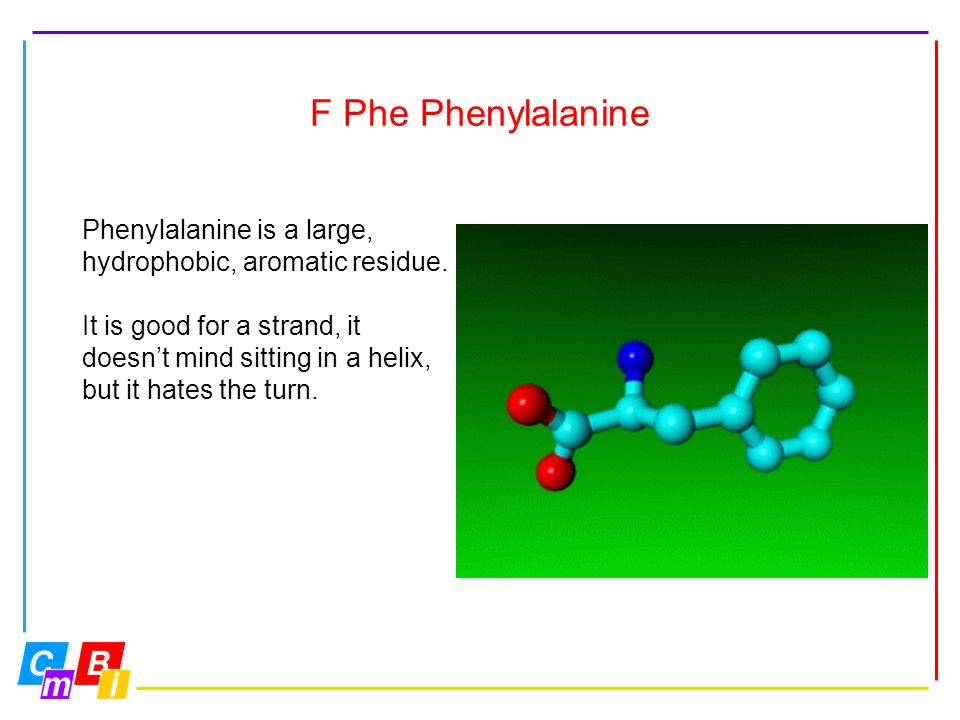 F Phe Phenylalanine Phenylalanine is a large, hydrophobic, aromatic residue. It is good for a strand, it doesn't mind sitting in a helix, but it hates