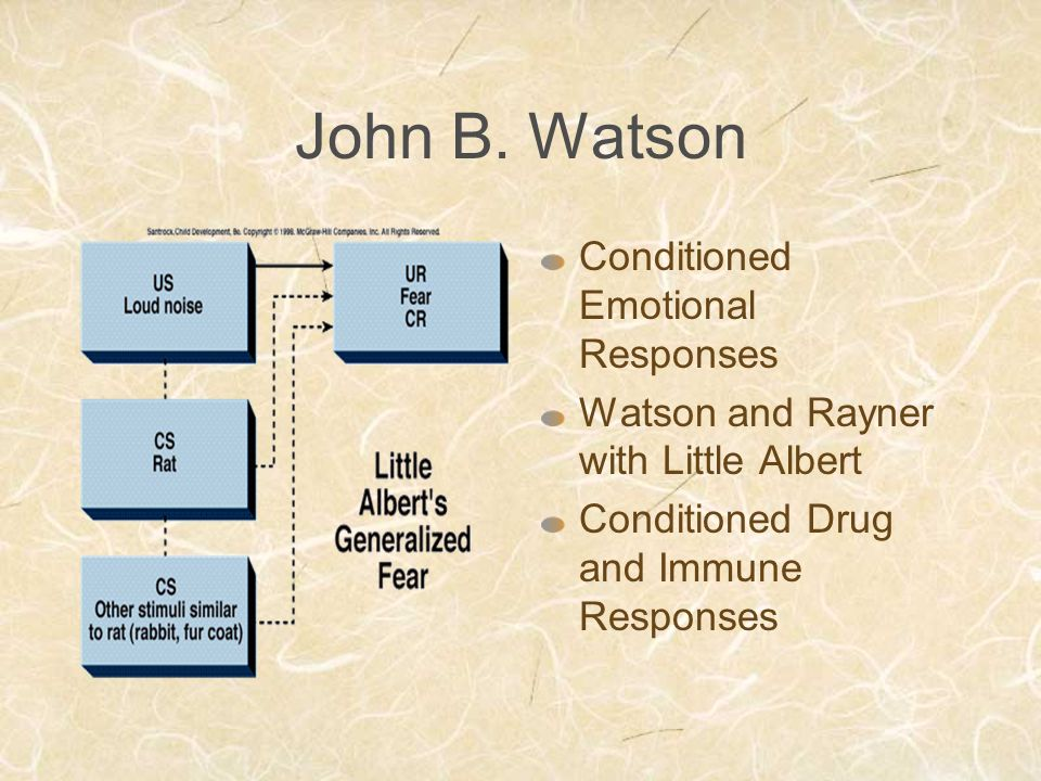 John B. Watson Conditioned Emotional Responses Watson and Rayner with Little Albert Conditioned Drug and Immune Responses