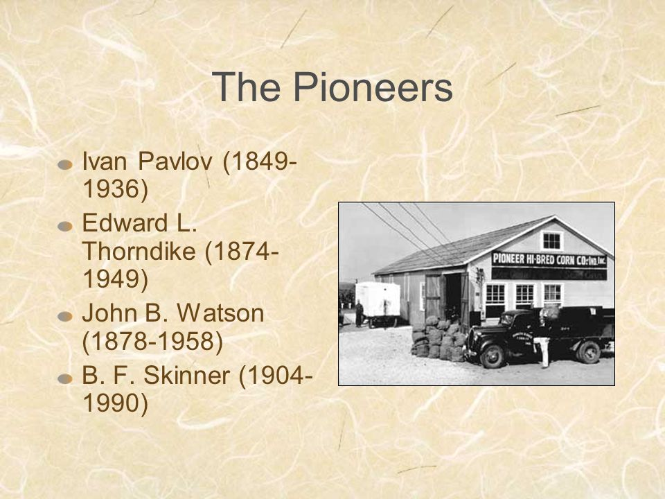 The Pioneers Ivan Pavlov (1849- 1936) Edward L.Thorndike (1874- 1949) John B.
