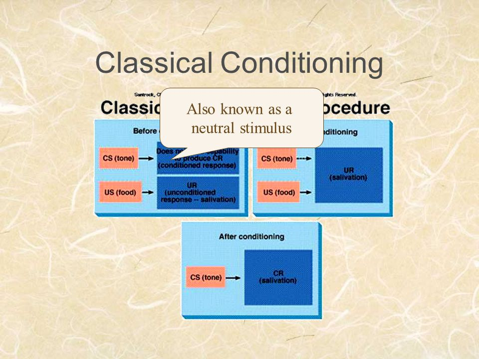 Classical Conditioning Also known as a neutral stimulus