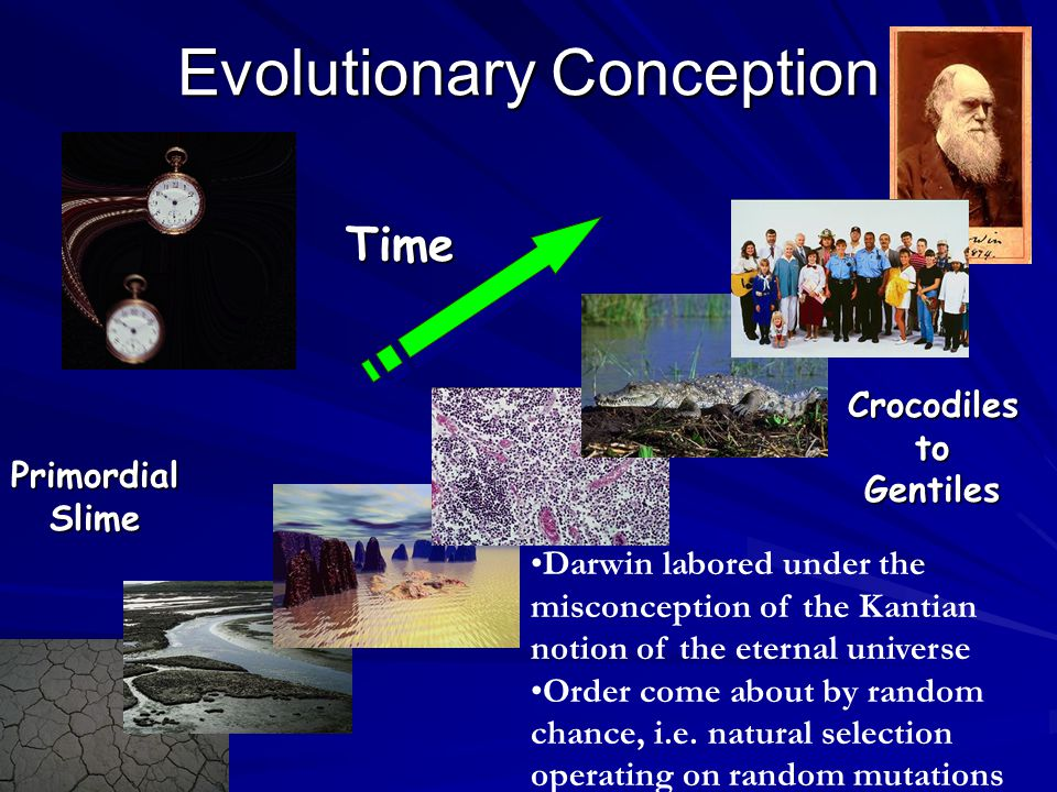 Doesn't the theory of evolution disprove Genesis.