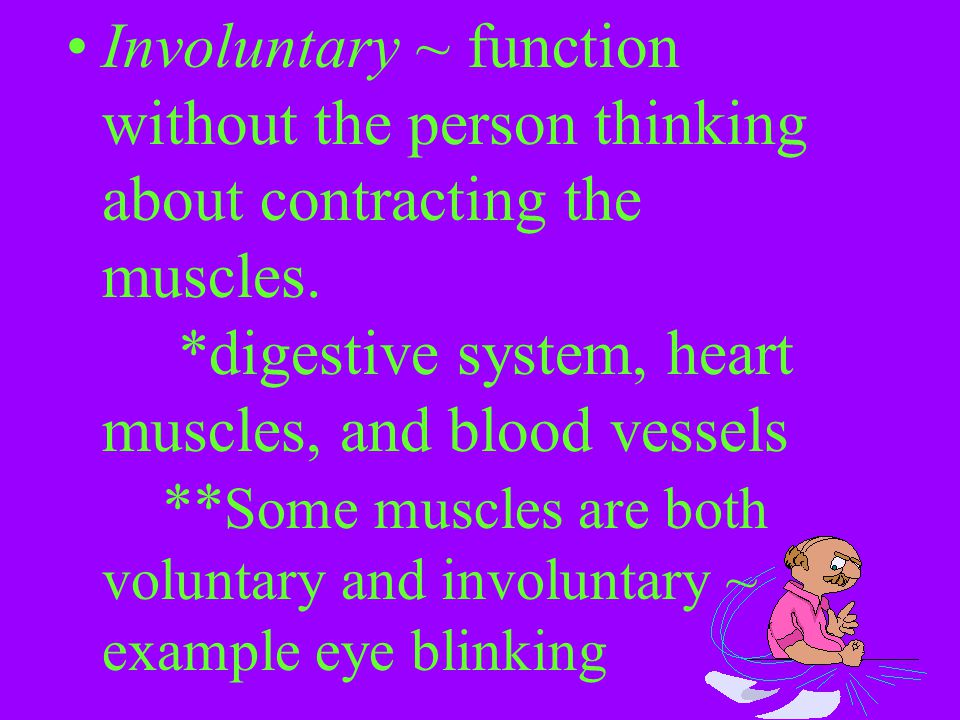 Involuntary ~ function without the person thinking about contracting the muscles. *digestive system, heart muscles, and blood vessels ** Some muscles