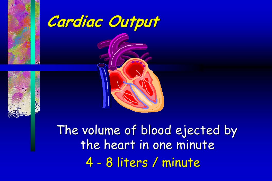 Cardiac Output The volume of blood ejected by the heart in one minute 4 - 8 liters / minute 4 - 8 liters / minute