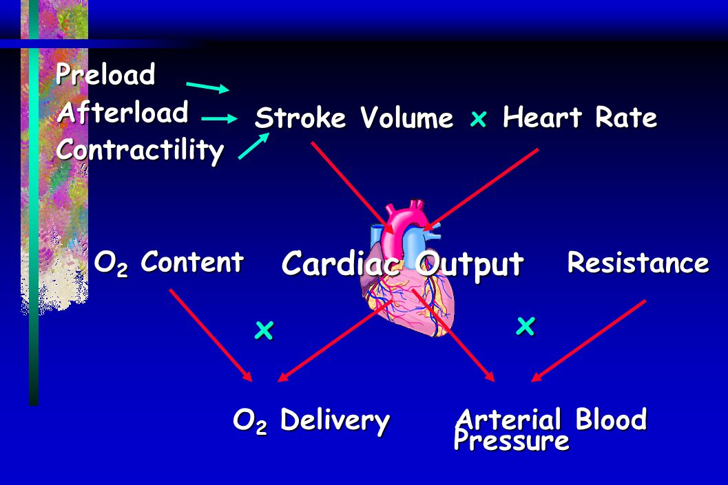 PreloadAfterloadContractility Resistance Stroke Volume Heart Rate Arterial Blood Pressure O 2 Delivery O 2 Content Cardiac Output x x x