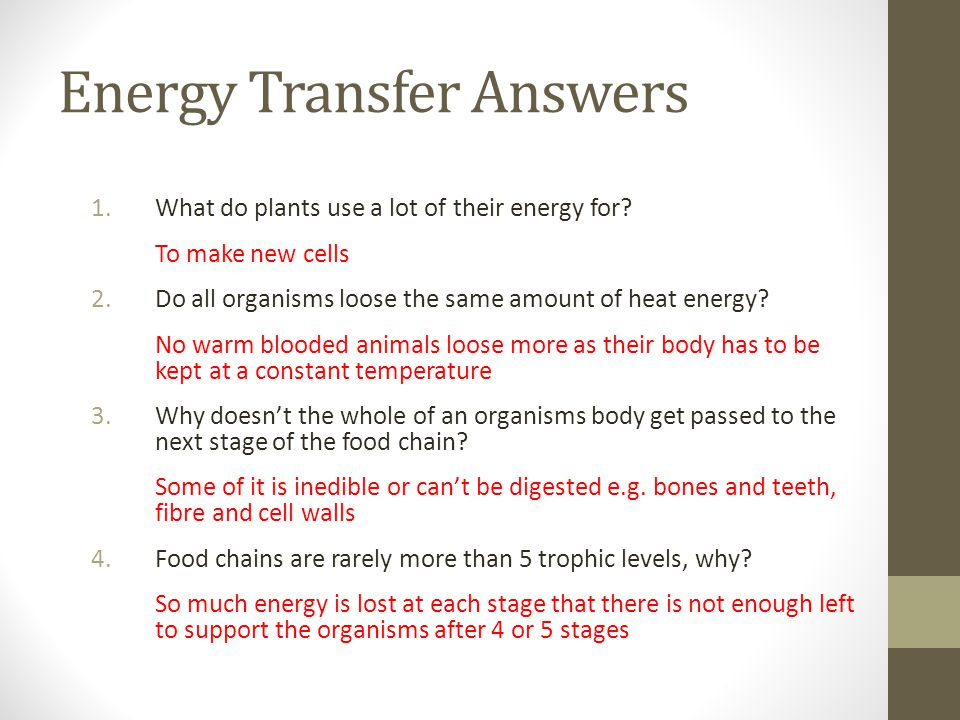 Energy Transfer Answers 1.What do plants use a lot of their energy for? To make new cells 2.Do all organisms loose the same amount of heat energy? No