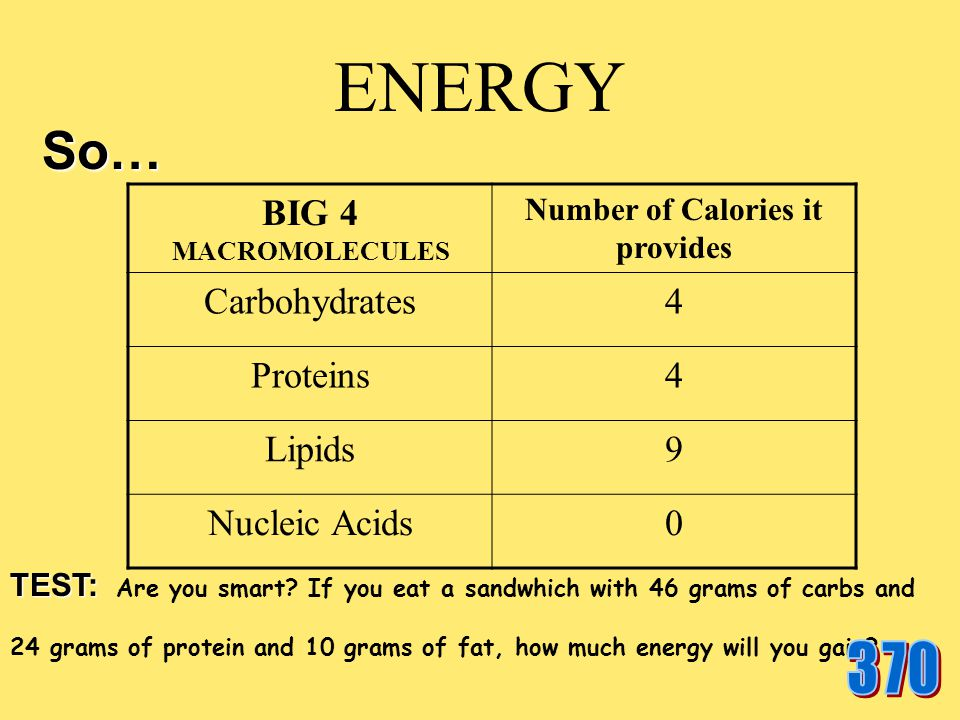 Nucleic acids The nucleic acids in food are not considered a substance that the body uses to gain energy.