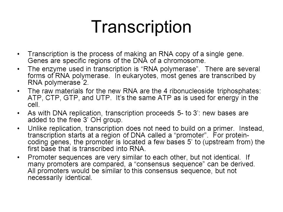 Process of Transcription Transcription starts with RNA polymerase binding to the promoter.