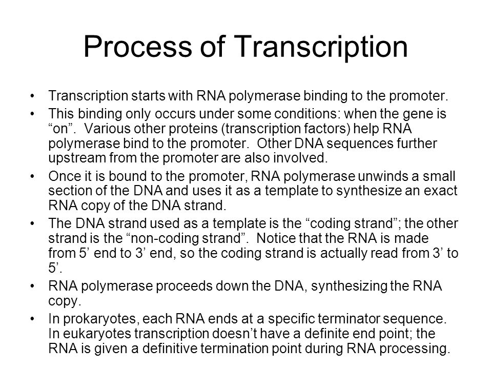 Transfer RNA Transfer RNA molecules are short RNAs that fold into a characteristic cloverleaf pattern.